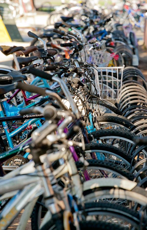 Davis Bikes